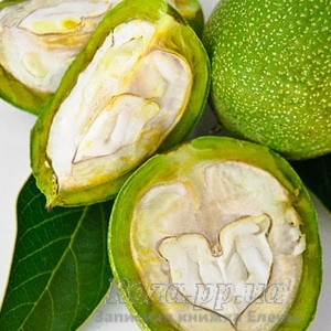 green_walnuts